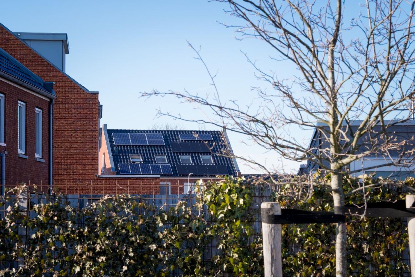 Duurzame stroom wint het van kolen