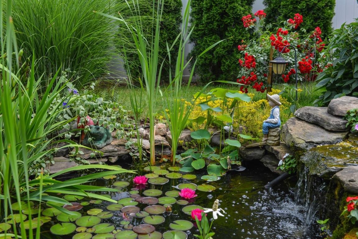 Verkoeling in eigen tuin